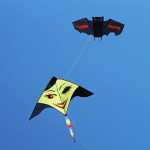 Go Fly A Kite In Kitty Hawk
